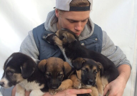Gus Kentworthy Rescuing Puppies to prove he's more than disembodiedabs.